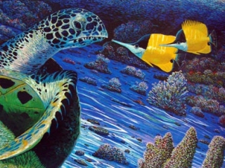 Turtle and the Butterfly