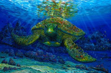 Talk Story With a Turtle
